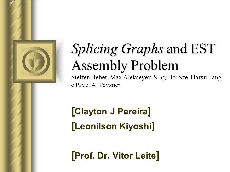 [Clayton J Pereira] [Leonilson Kiyoshi] [Prof. Dr. Vitor Leite]